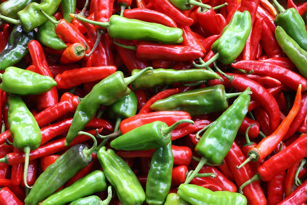 bhutanese-green-chilli